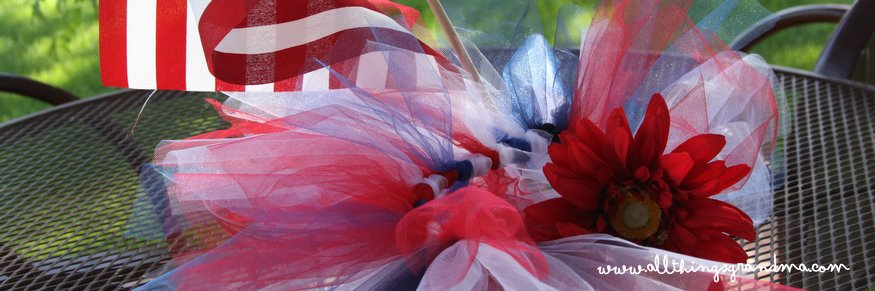 Red White and Blue Tutu