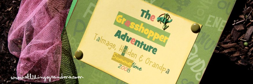 A Tiny Tale:  The Grasshopper Adventure