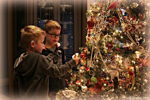 owen and andrew christmas tree 2014