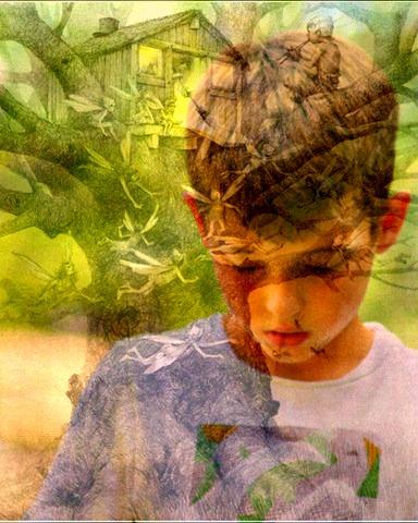 collage tally fairies